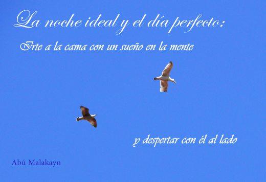 La noche ideal y el dia perfecto